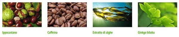 συστατικά κρέμας κάστανου αλόγου, καφεΐνη, φύκια, ginkgo biloba