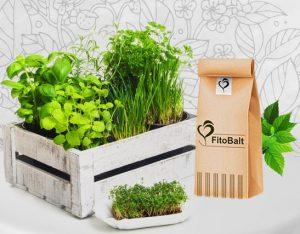 απορρίψεις fitobalt και βότανα