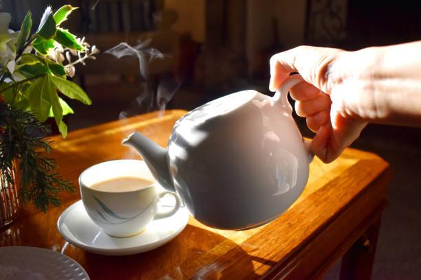 τσάι, βότανο tribulus terrestris
